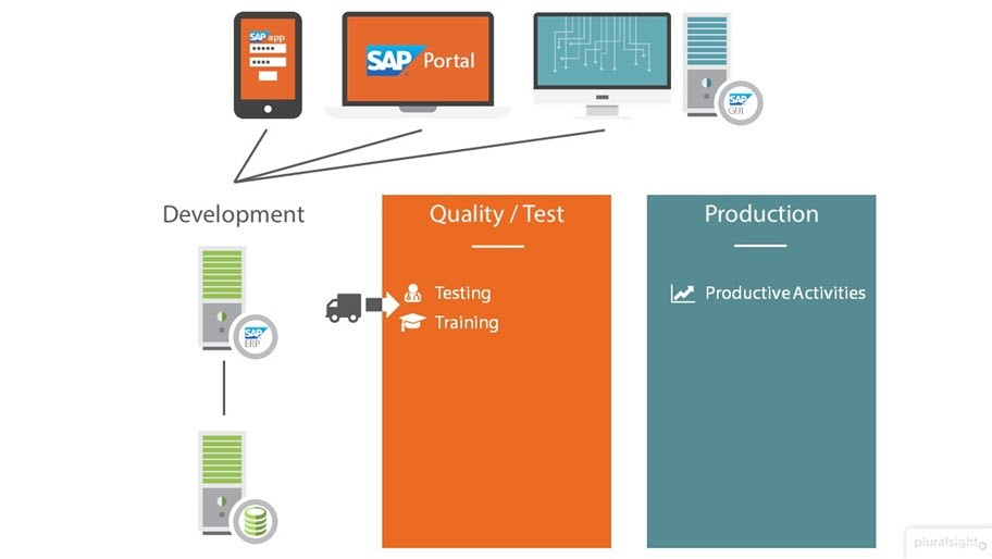 SAP: Getting Started